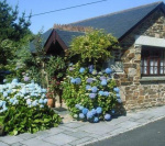 Wild Flower Cottage - Sleeps 2 - Newquay