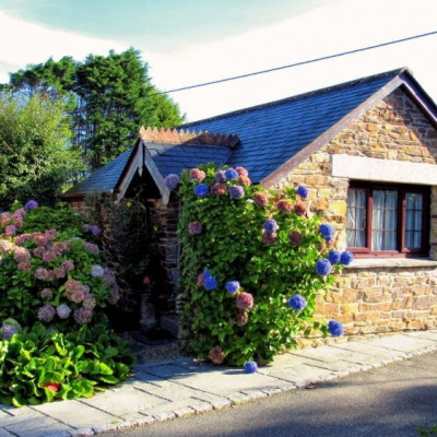 Wild Flower cottage outside front