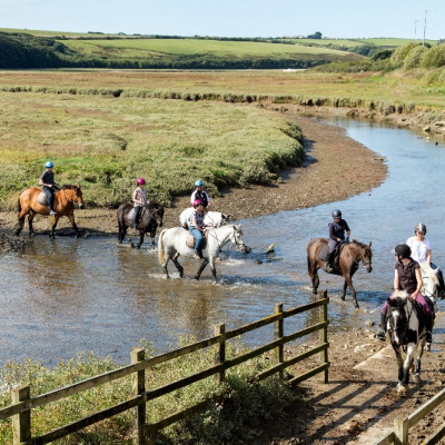 Guided Horse Riding trips on the Gannel