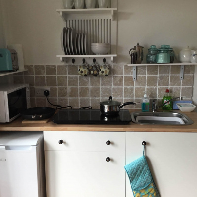 Plug in 2 ring induction hob