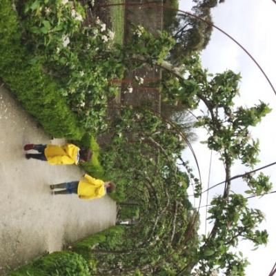 Close to Heligan Gardens