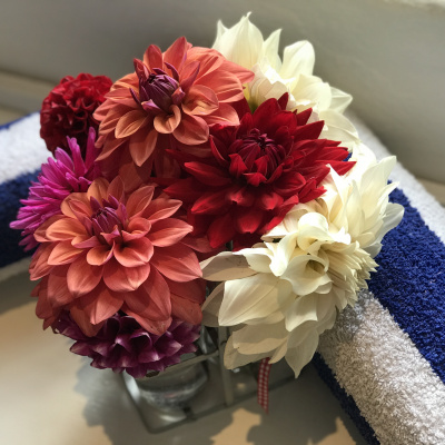 Welcome flowers and beach towels for your use