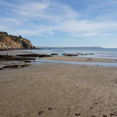 Par Beach (looking to Fowey)