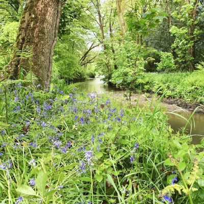Beautiful riverside walks on our private 40 acre estate