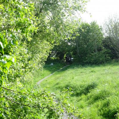 hidden picnic spots