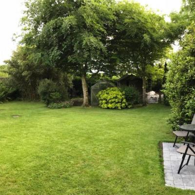 The garden and patio area